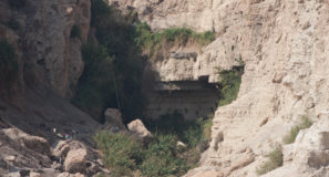 Ein Gedi Israel Tours