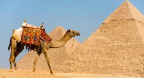 Travel the Bible Egypt Jordan Pyramids, Sphinx, Petra, Bethany Beyond