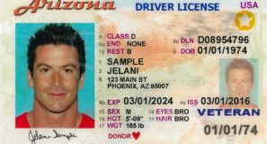 Driver's License International Travel Compliant